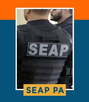 Pacote para Agente Prisional (Polícia Penal) da SEAP PA